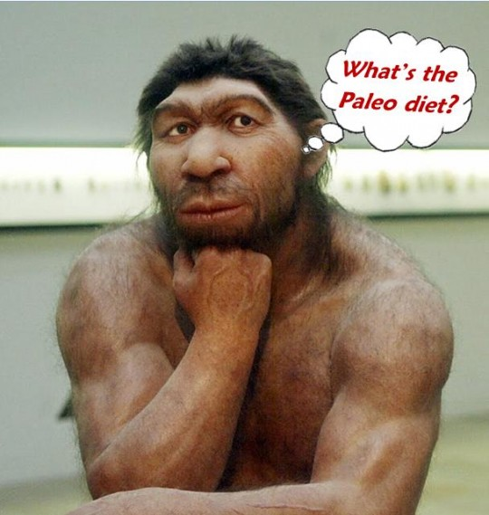 Criticisms of the paleo diet; do the critics review the science or just the media hype