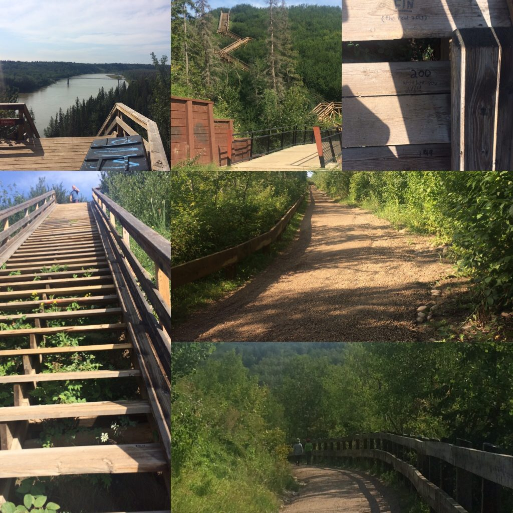 Fort Edmonton (Wolf Willow) Footbridge Half-pipe collage
